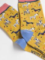 Dog 2 Pack Socks