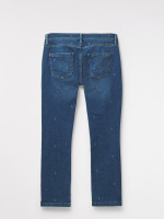 Rye Star Embroidered Jean