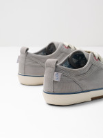 Darcy Canvas Trainer
