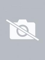 August Birthstone Earrings