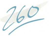 260 dog bandanas