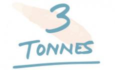 3 Tonnes