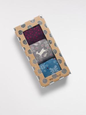 Sock Box Novelty