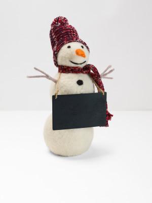 Stan The Standing Snowman