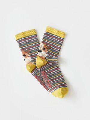 Dog Stripe Sock