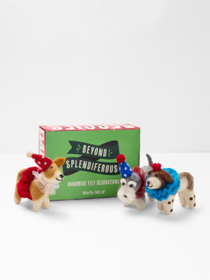 Trio Of Party Dogs Box