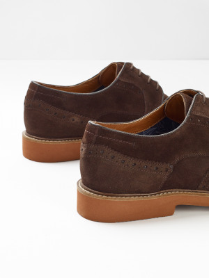 Bobby Suede Brogue Shoes