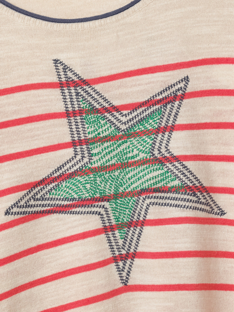 Illustration  Star Jumper
