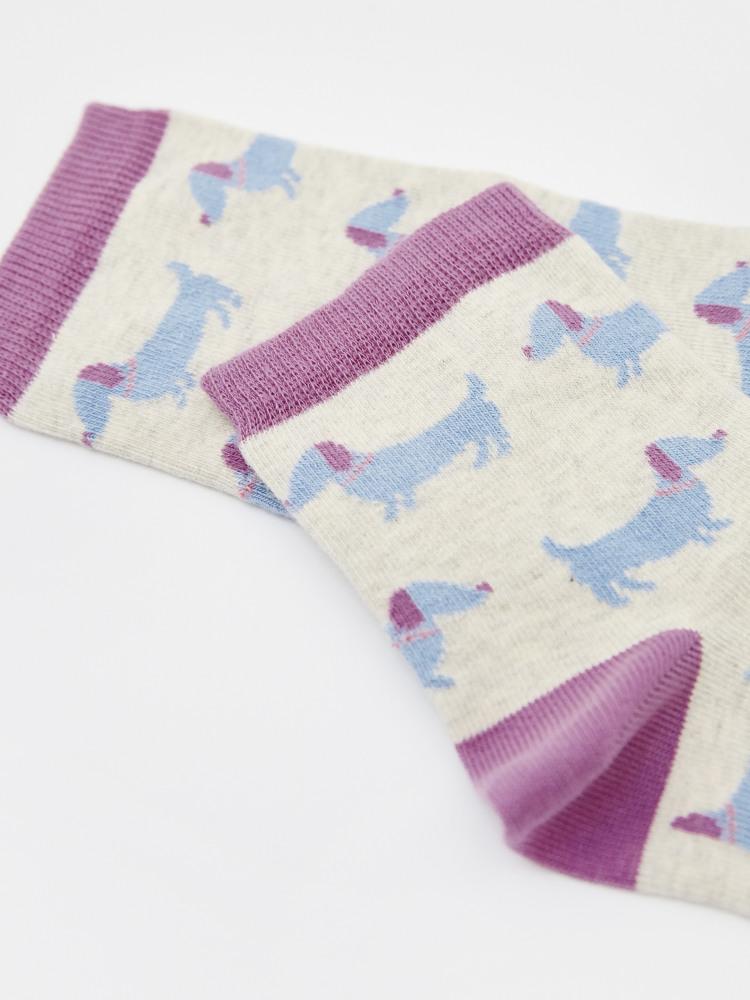 Clever Sausage Dog Socks
