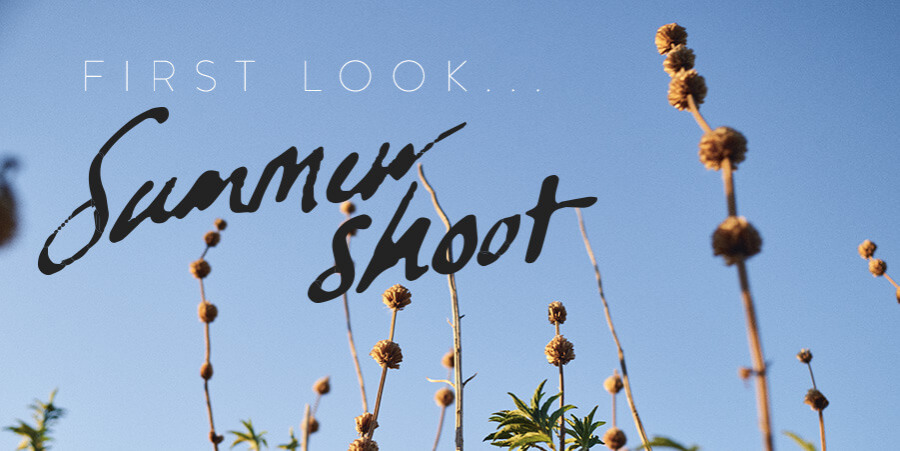 First look summer shoot