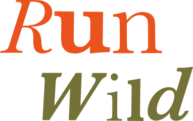 Run Wild - Spirit Lookbook Main Title